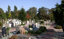 Den-Haag,-Begraafplaats-Nieuw-Eykenduinen