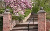 Noordwijk---uitbreiding-algemene-begraafplaats