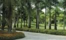Singapore---Singapore---Marina-South-Park-(6)